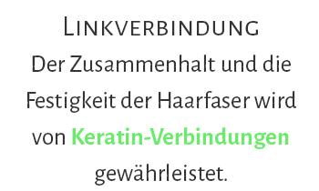 rottmann_ruether_frisur_muenster_loreal_smartbond_linkverbindung_text